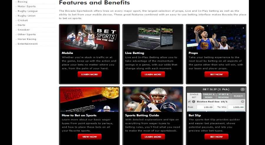Bovada sports features